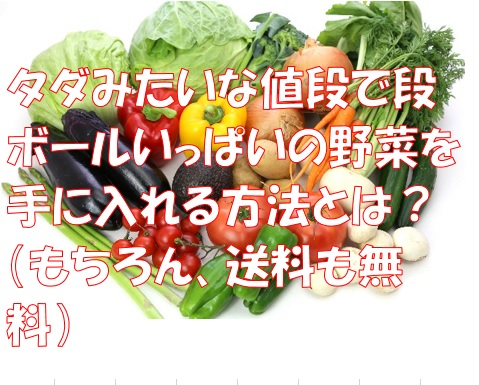 野菜の秘密
