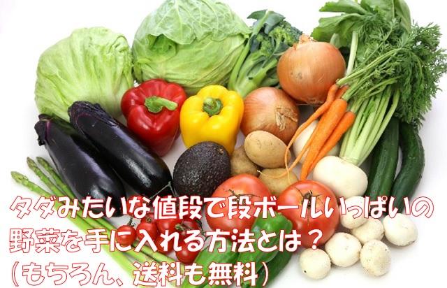 野菜を安く手に入れる裏技