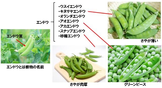 えんどう豆とキヌサヤとスナップエンドウ