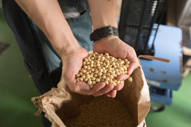 醤油の原料は大豆