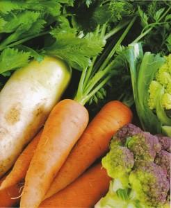 野菜の賞味期限と保存方法