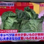 新鮮な春野菜を見極める目利きのポイント
