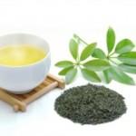 日本茶の賞味期限・消費期限・日持ちについて