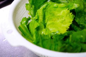 サラダの材料レタス
