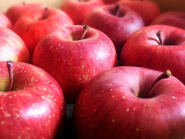 新鮮なりんごの選び方