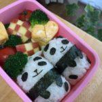 【遠足に最適】手作りお弁当を長く日持ちさせる方法
